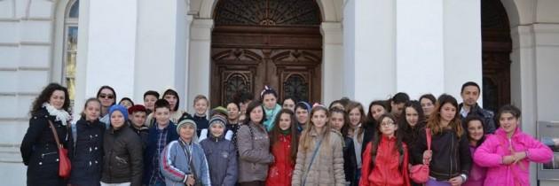 """""""Șansa la cultură""""- PES Activists Arad"""