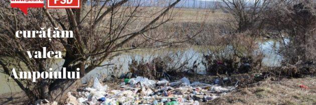 Alba: protejăm natura României!